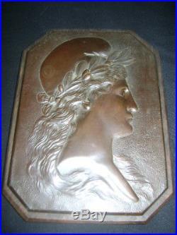 Ancienne Plaque En Bronze Sur Bois Marianne D514